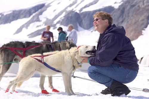Alaska dog-sled-tour-juneau-icefield